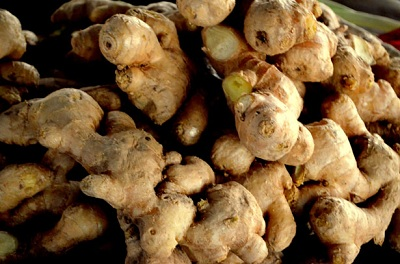 ginger for low back pain